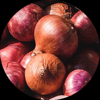 Item onion